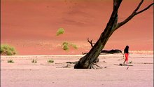 Namibia_Crossings_1
